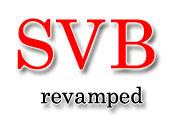Customs - Board revamps SVB